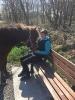rund um die Pferde_22